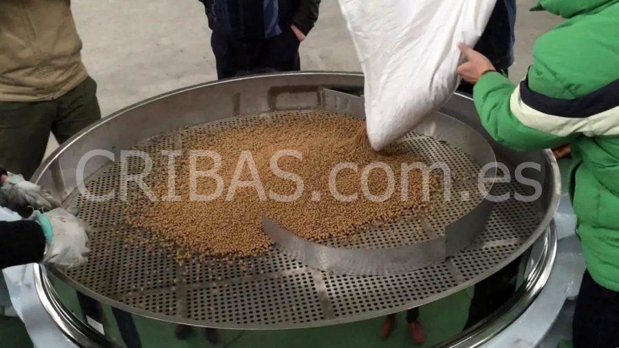 tamizado de trigo